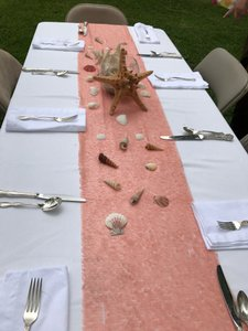 Beautiful Peach Sequined Table Runners (4) And Tablecloth