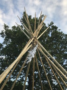 Tipi Poles For Wedding Arch Authentic Lodge Pine From Montana