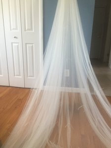 Pronovias Soft Tulle Cathedral Veil With Ostrich Feathers V5204