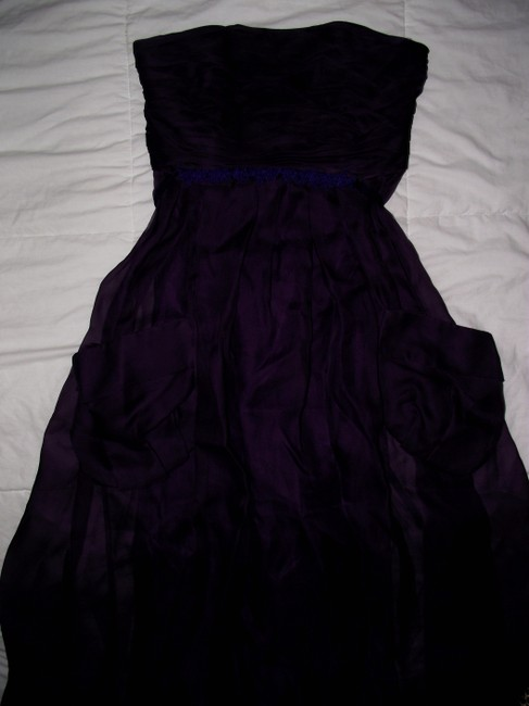 Vera Wang Lavender Label Fully Lined Pleated Silk Size 6 Mesh Dress