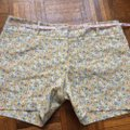The Limited Dress Shorts yellow multicolor Image 4