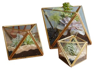Faceted Terrariums Small Gold (set Of 4)