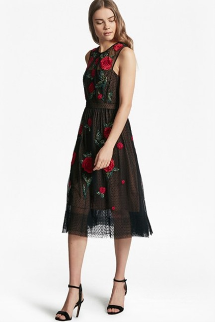 French Connection Amore Sparkle Embroidered Tulle Dress Image 1