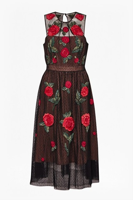 French Connection Amore Sparkle Embroidered Tulle Dress Image 2