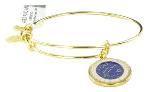 Alex and Ani Leo Celestial Wheel Shiny Gold Charm Bangle Bracelet A15EB63YG NWT
