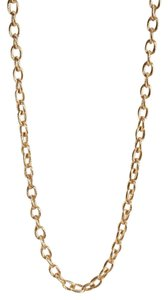 Forever 21 Forever 21 Long Oval Chain Link Necklace