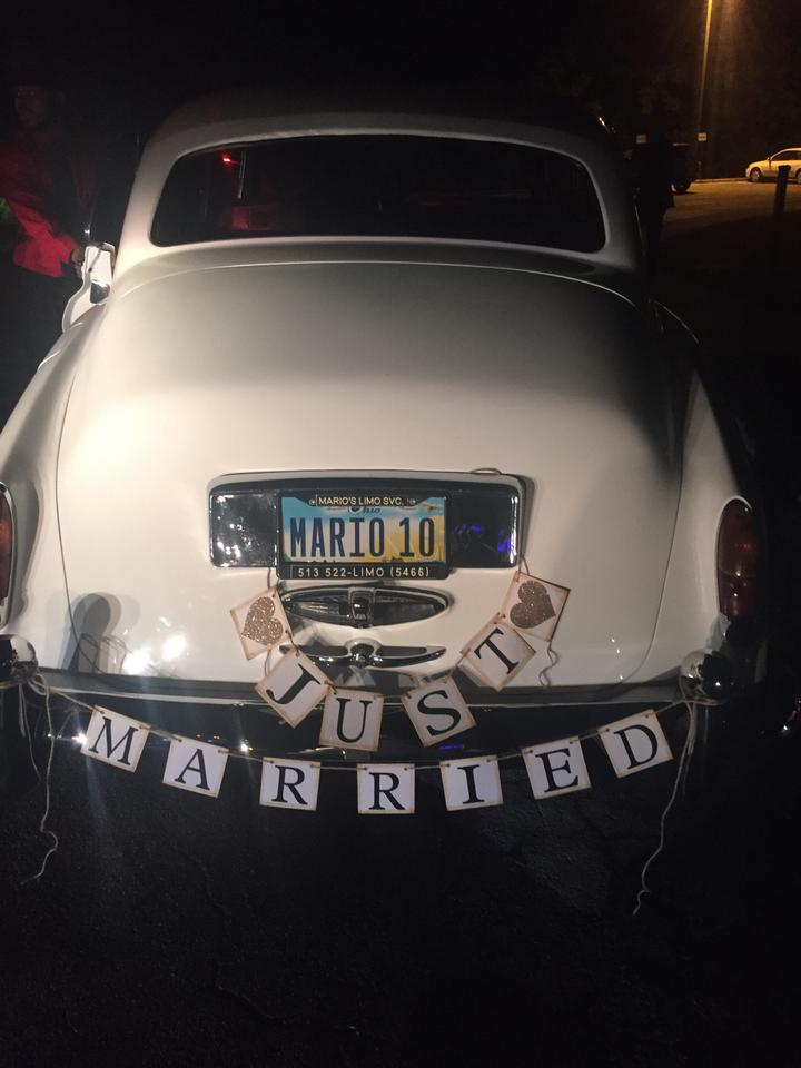 multibrown just married banner just married car sign