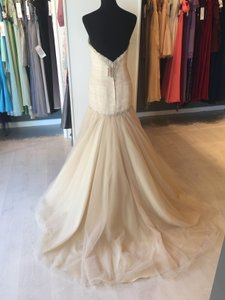 Essense of Australia Gold Tulle with D1912 Modern Wedding Dress Size 6 (S)