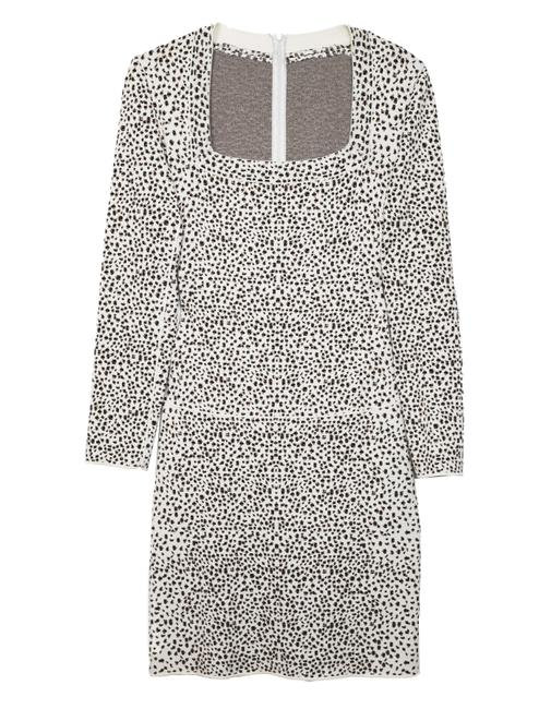 Preload https://img-static.tradesy.com/item/21851346/alaia-ivory-leopard-long-sleeve-fit-and-flare-fr44-mid-length-workoffice-dress-size-10-m-0-0-650-650.jpg