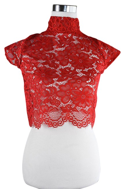 Preload https://img-static.tradesy.com/item/21852372/lisa-nieves-red-stretch-lace-blouse-size-4-s-0-1-650-650.jpg