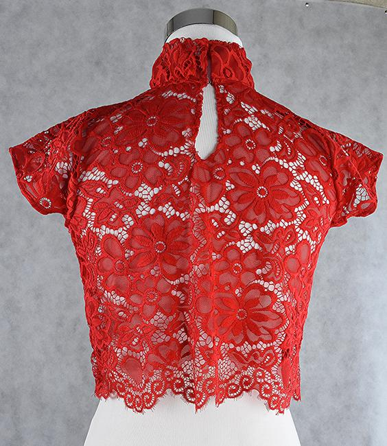 Lisa Nieves Lace Stretch Crop Top red Image 1