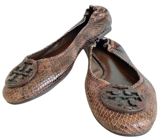 Shop for flat shoes snakeskin online at Target. Free shipping on purchases over $35 and save 5% every day with your Target REDcard. skip to main content skip to footer. Women's Mandalyn Lace Pointed Toe Ballet Flats - A New Day™ Black.