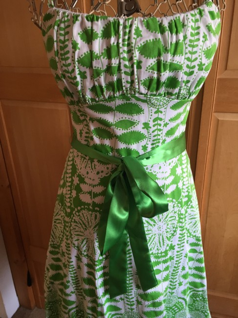 Alyn Paige short dress Green and white Fit & Flare Spaghetti Straps Sumer on Tradesy