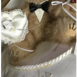 Brown Bear with Black and White Tux and Ivory Pillow Teddy