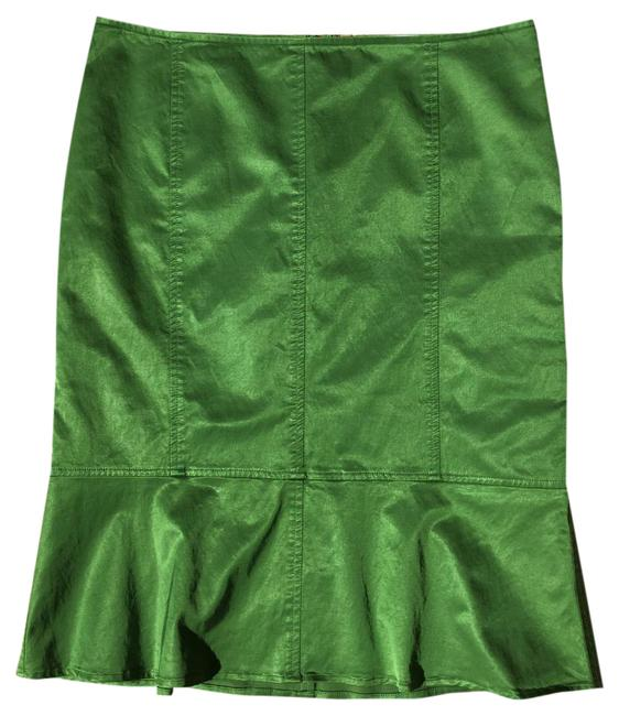 Chaiken Skirt Green Image 1