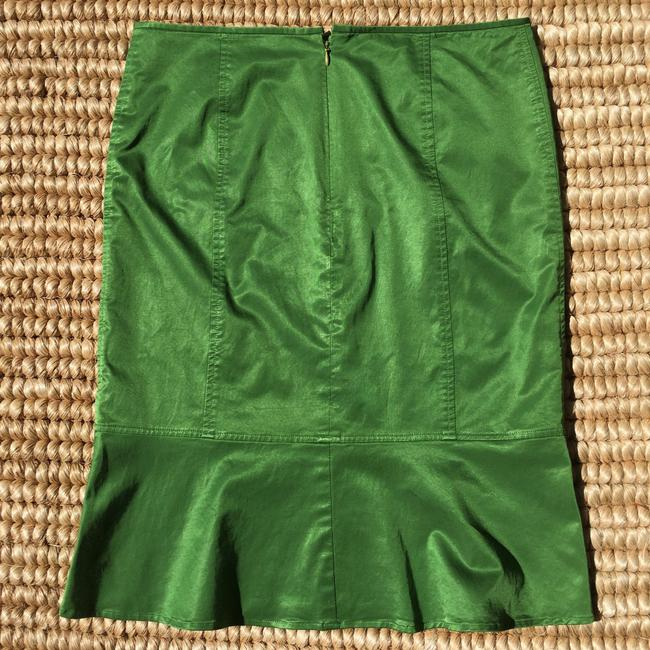 Chaiken Skirt Green Image 2