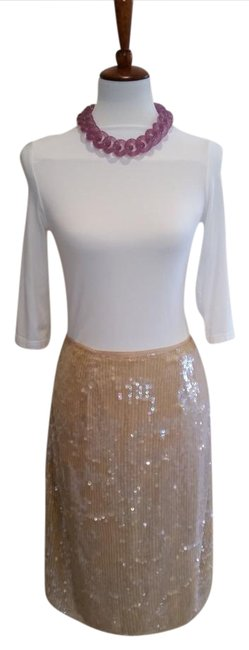Preload https://item1.tradesy.com/images/clifford-and-wills-nude-sequined-knee-length-skirt-size-6-s-28-2198015-0-2.jpg?width=400&height=650