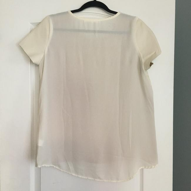 Potter's Pot Faux Leather Sheer Top