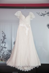 Mikaella Bridal Champagne Lace 1431706 Vintage Wedding Dress Size 2 (XS) - item med img