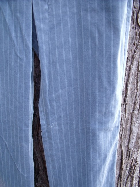 Express New With Tags Pinstripe Velvet Editor Career Straight Pants Blue