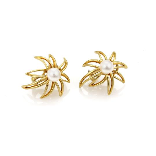 Preload https://img-static.tradesy.com/item/22020518/tiffany-and-co-20962-fireworks-pearls-18k-yellow-gold-post-clip-earrings-0-0-540-540.jpg