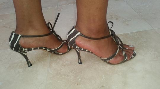 Manolo Blahnik Zebra Brown and Cream Sandals Image 1
