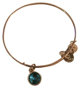 Alex and Ani Alex and Ani December Birthstone Charm Bangle