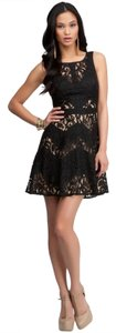 bebe Lace Cocktail Skater Party Evening Dress