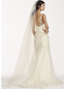 David's Bridal White Long New Chapel Length with Pencil Edge Veil