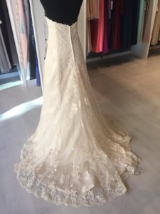 Maggie Sottero Light Gold Lace Applique Emma Lynette Traditional Wedding Dress Size 16 (XL, Plus 0x)