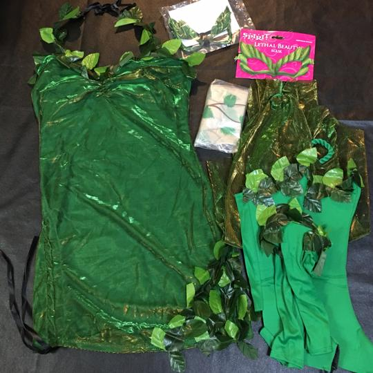 Spirit Lethal Beauty Poison Ivy Sexy Villain Costume Image 2