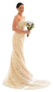 Cymbeline Paris Champagne W/ Ivory Lace Unknown Feminine Wedding Dress Size 10 (M)