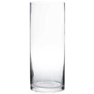 "12"" Clear Glass Cylinder Vases"