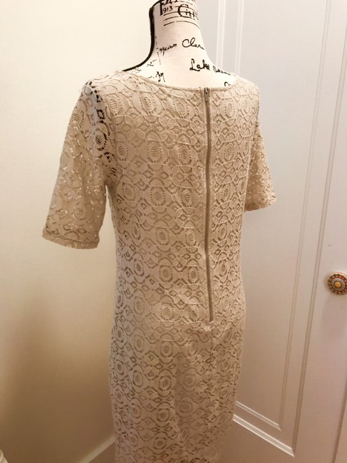 Banana Republic Lace Shift Dress Image 3