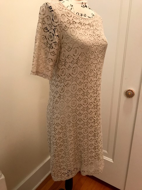 Banana Republic Lace Shift Dress Image 6