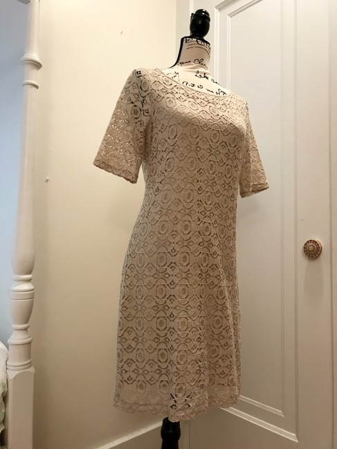 Banana Republic Lace Shift Dress Image 7