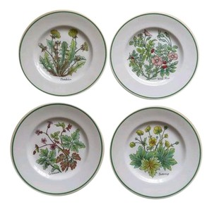 Tiffany & Co. Tiffany & co rare set of 4 plates plus an extra one vintage lot flower