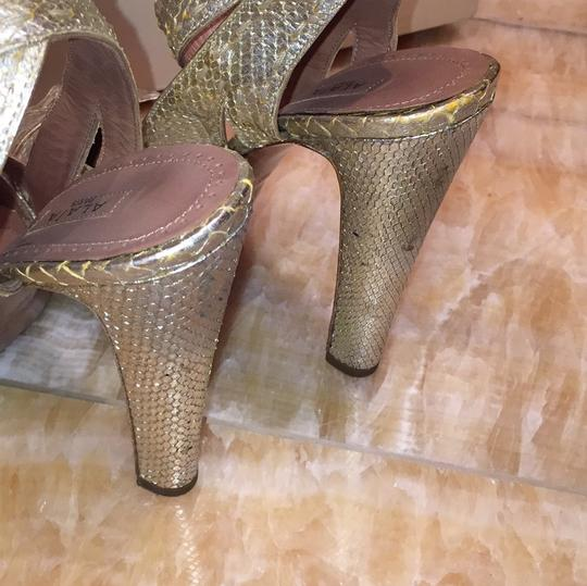 ALAA Sexy Snakeskin Cork tan and gold Pumps