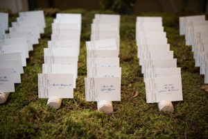 Rustic Birch Wood Place Card Holders!