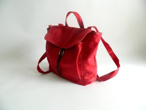 Jeunesse Diaper Messenger Purse Red Travel Bag