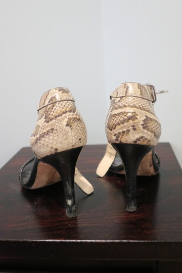 Coach Snakeskin and black Pumps Image 3