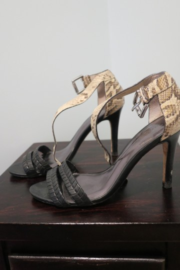 Coach Snakeskin and black Pumps Image 4