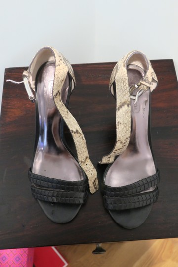 Coach Snakeskin and black Pumps Image 6