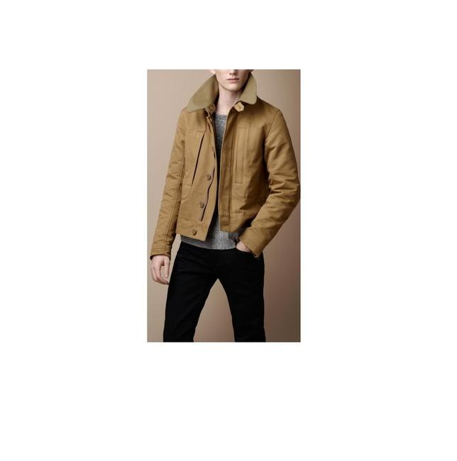 Preload https://img-static.tradesy.com/item/22411956/burberry-dark-canvas-browngreen-brit-men-s-minton-large-miltary-jacket-size-12-l-0-0-650-650.jpg