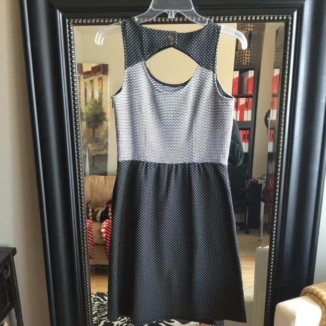 The Limited short dress Black & White on Tradesy