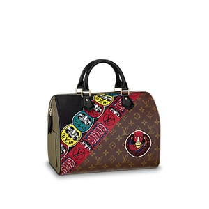 Louis Vuitton Limited Edition Speedy Neverfull Rare Hobo Bag