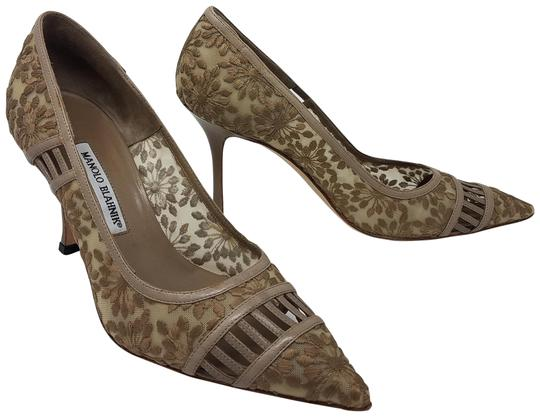 Preload https://item4.tradesy.com/images/manolo-blahnik-beige-leather-embroidered-pointed-toe-pumps-size-eu-40-approx-us-10-regular-m-b-22470413-0-4.jpg?width=440&height=440
