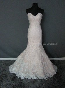 Allure Bridals Champagne/Ivory Lace 9365 Feminine Wedding Dress Size 6 (S)