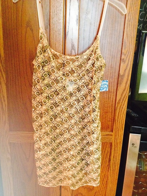 Intimately Free People Sequined See Through Lace Dress