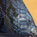 Python Snake Tote in blue Image 3